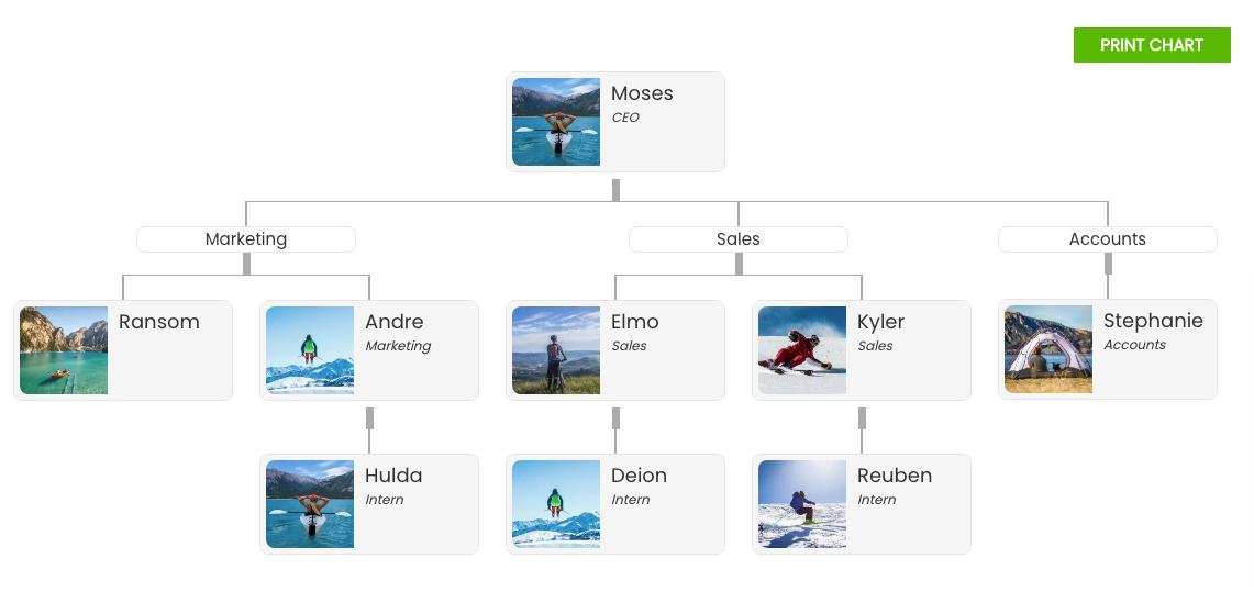 Wordpress Org chart
